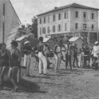 Bellaria #7