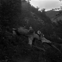 Alture presso Cabelli, 1938 (Archivio P. Zangheri)