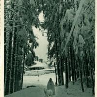Eremo di Camaldoli d_inverno (Archivio fam. Giannelli)